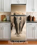 Наклейка на холодильник Слон Z020
