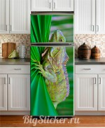 Наклейка на холодильник Хамелеон Z017